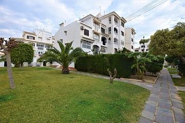 Apartment in Calas Blancas, Torrevieja in Olé International