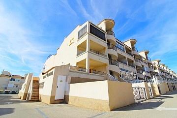 2 bedroom ground floor apartment near Punta Prima in Ole International