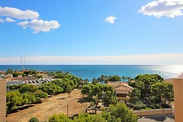 Penthouse in Punta Prima 100 m. to beach  * in Ole International