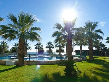 2 beds seafront apartment in Cabo Roig  in Ole International