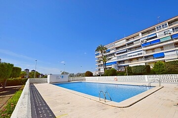 Large 3 beds apartment overlooking the sea in the town center of Torrevieja in Ole International