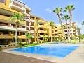 2-roms leilighet med havutsikt i Punta Prima * in Ole International