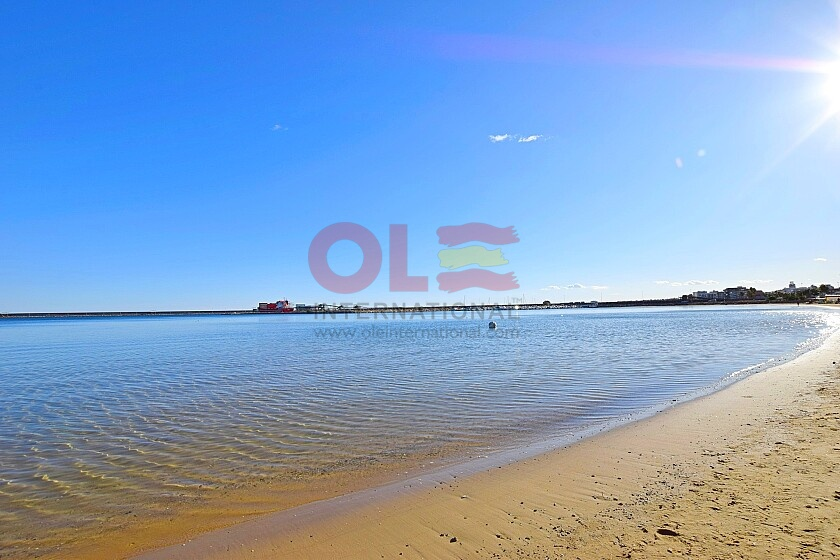 Studio 180 m. walk to beach in south Torrevieja  * in Ole International