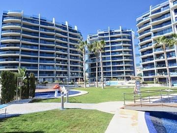 Apartment in Punta Prima in Olé International