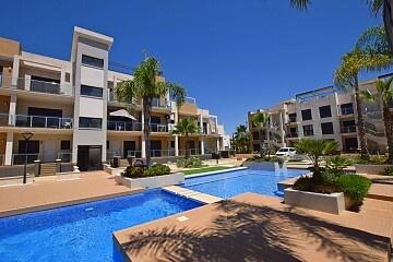 2-комнатная квартира с видом на бассейн в Ла Зения * in Ole International